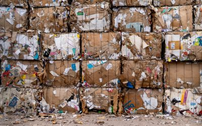 What Is Single-Stream Recycling?